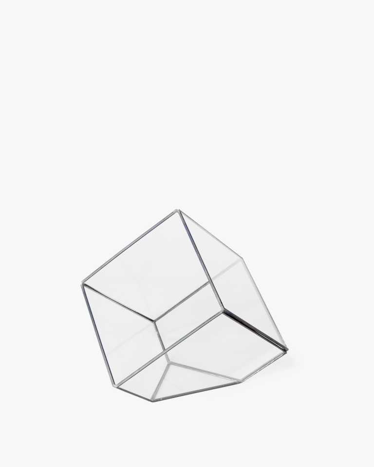 """Cubed Glass Terrarium - Black 6"""""""