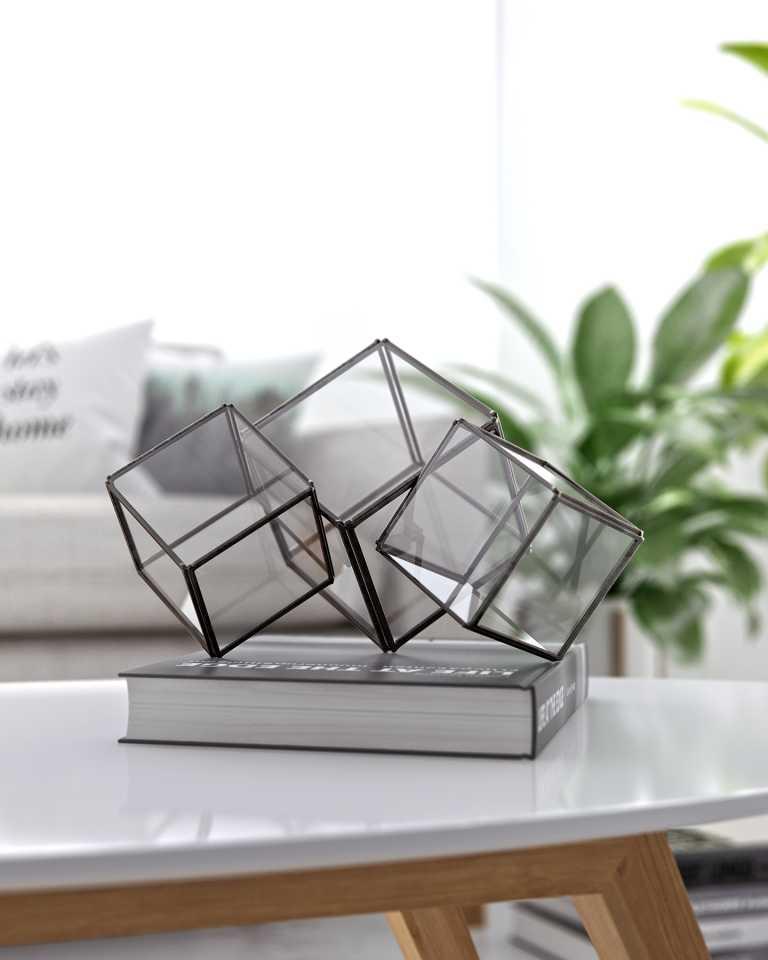 """Tri-cubed Glass Terrarium - Black 10"""""""